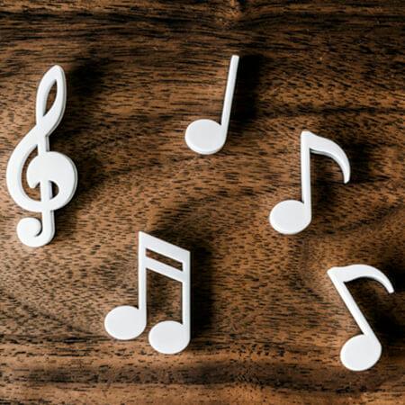 Erfan Pardisan Music